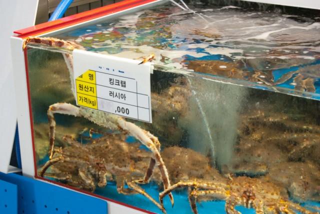 Krabbe beim Fluchtversuch (auf einem kleinen Markt)
